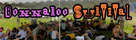 Bonnaroo Tips (A Survival Guide)